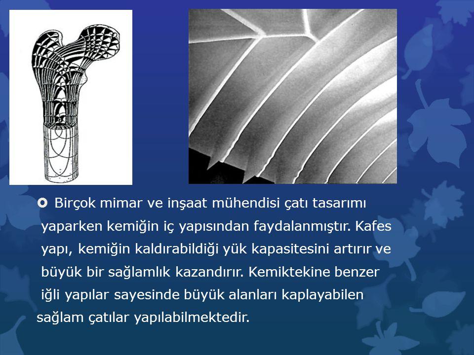 Birçok mimar ve inşaat mühendisi çatı tasarımı