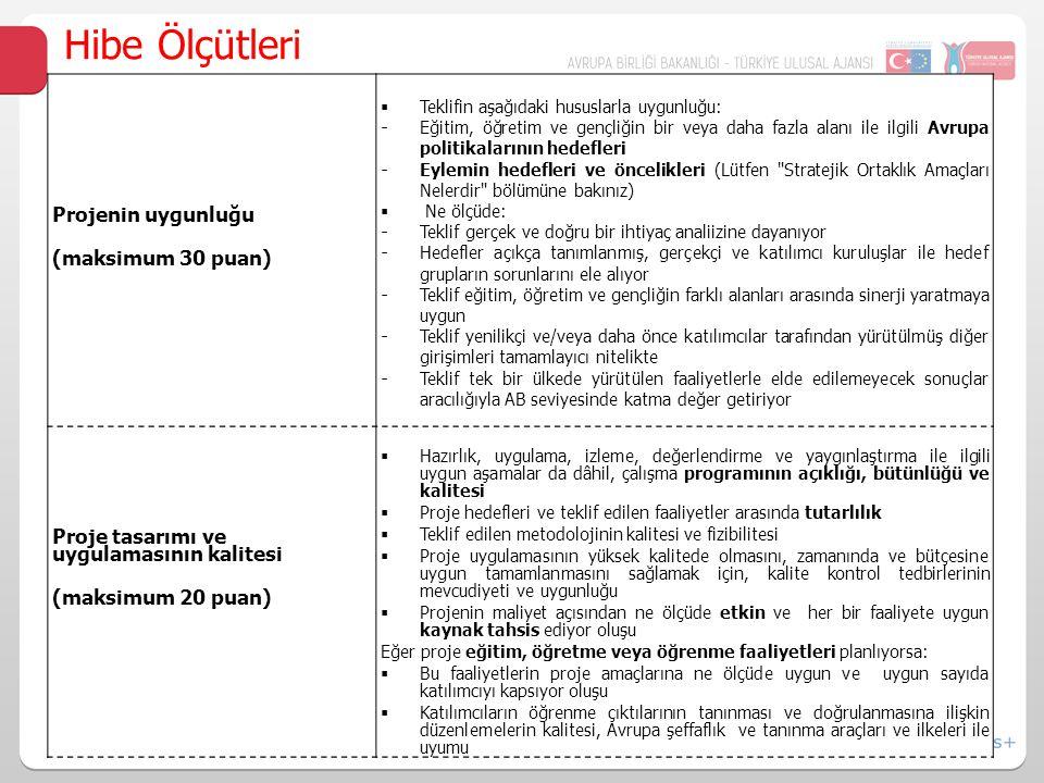 Hibe Ölçütleri Projenin uygunluğu (maksimum 30 puan)