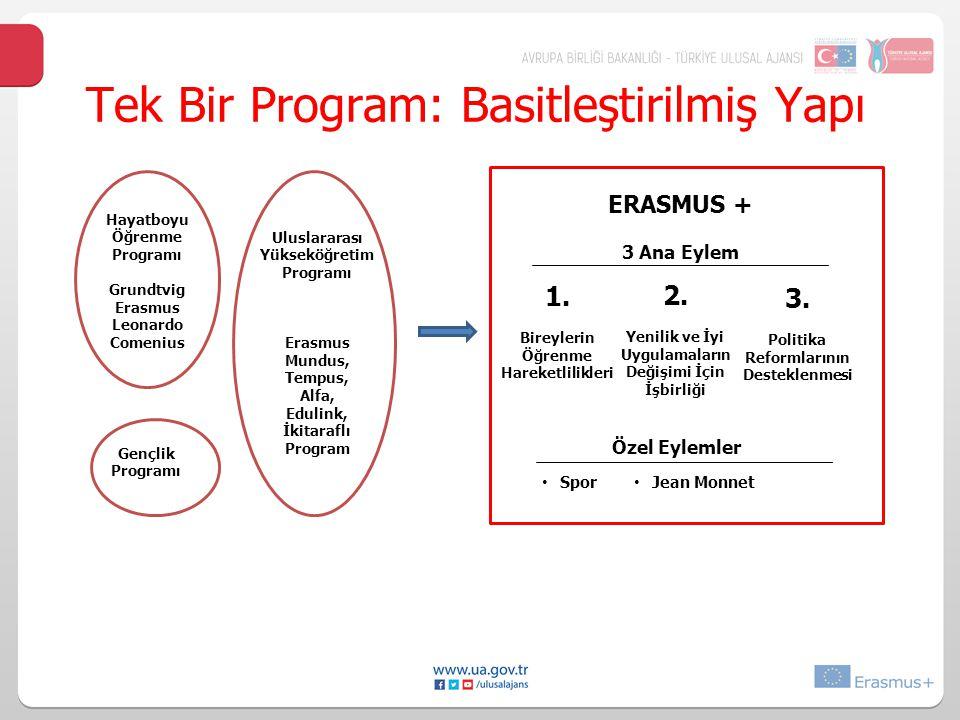 Tek Bir Program: Basitleştirilmiş Yapı