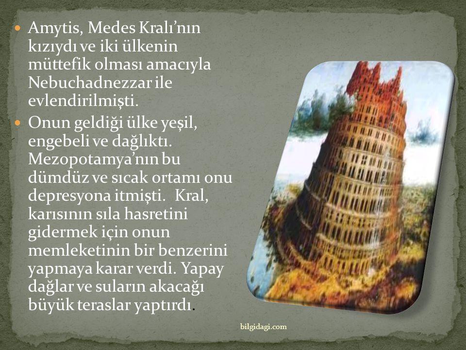 Amytis, Medes Kralı'nın kızıydı ve iki ülkenin müttefik olması amacıyla Nebuchadnezzar ile evlendirilmişti.