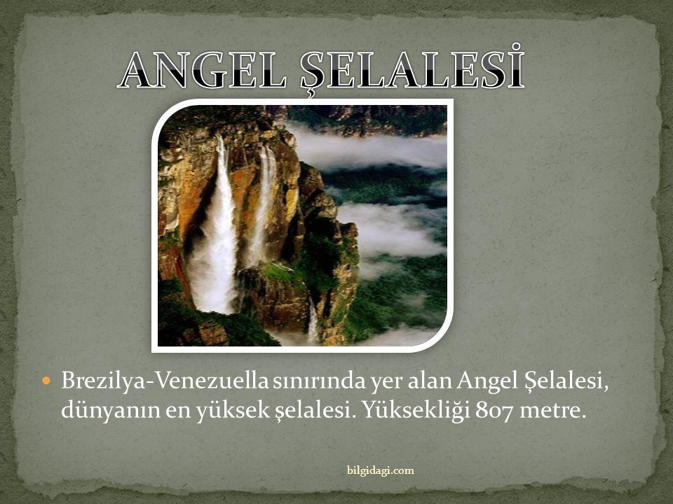 ANGEL ŞELALESİ Brezilya-Venezuella sınırında yer alan Angel Şelalesi, dünyanın en yüksek şelalesi. Yüksekliği 807 metre.