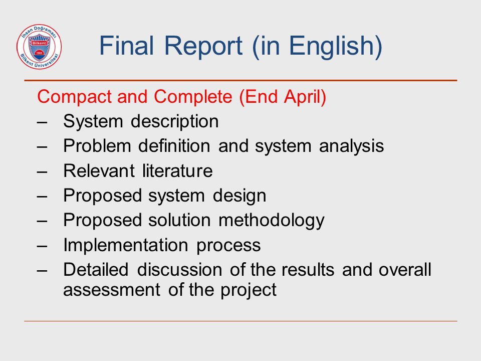 Final Report (in English)
