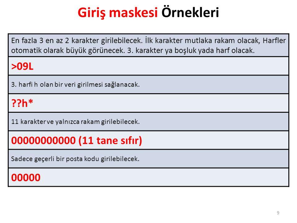 Giriş maskesi Örnekleri