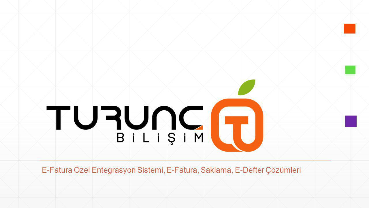E-Fatura Özel Entegrasyon Sistemi, E-Fatura, Saklama, E-Defter Çözümleri