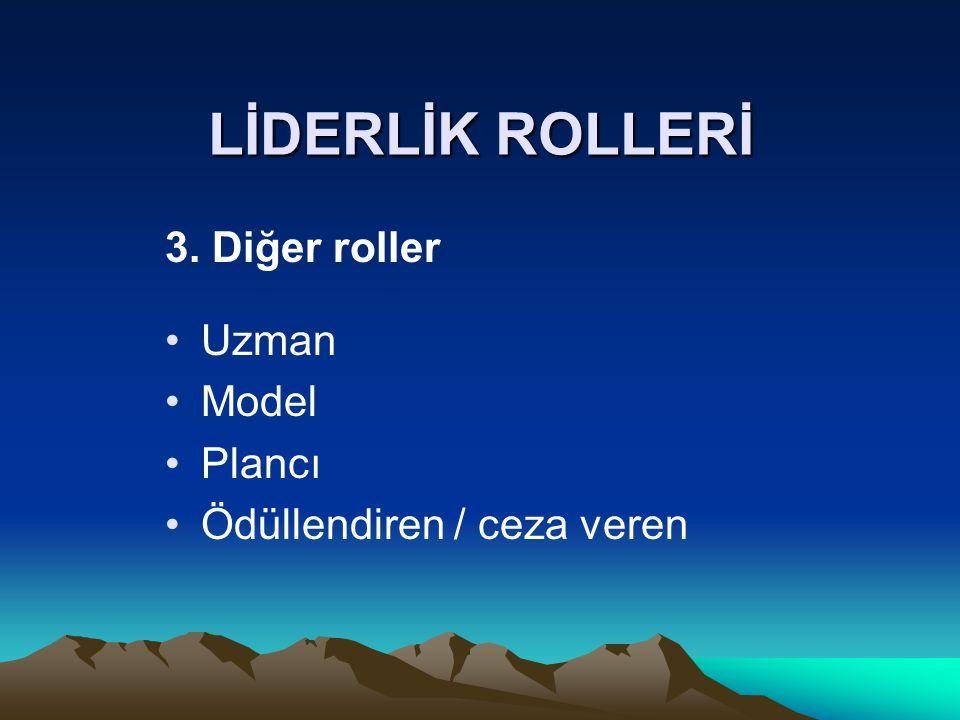 LİDERLİK ROLLERİ 3. Diğer roller Uzman Model Plancı