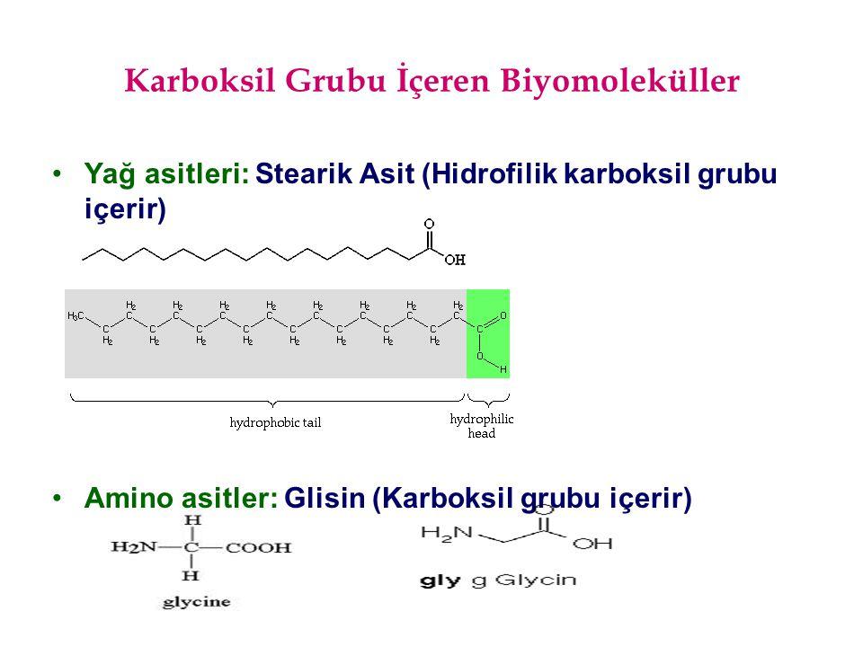Karboksil Grubu İçeren Biyomoleküller