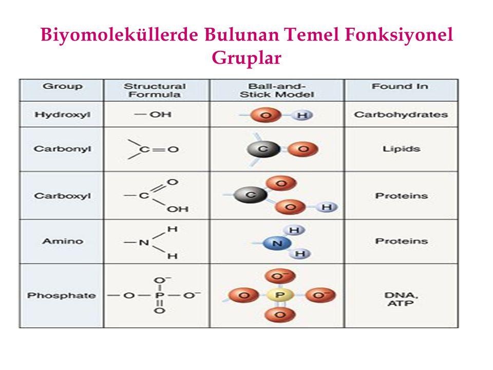 Biyomoleküllerde Bulunan Temel Fonksiyonel Gruplar