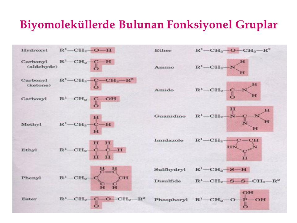 Biyomoleküllerde Bulunan Fonksiyonel Gruplar