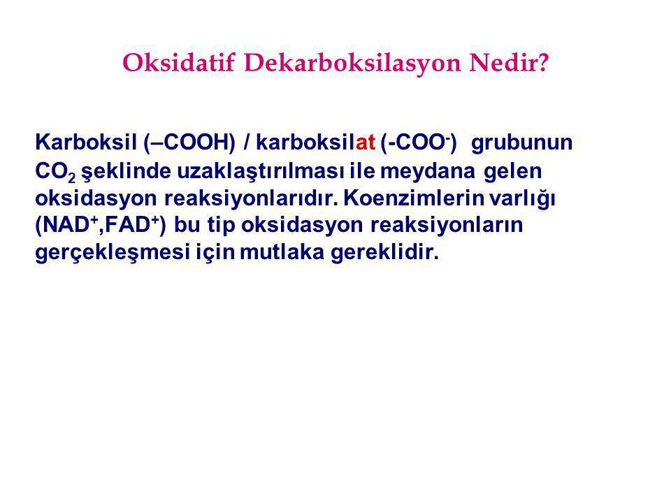 Oksidatif Dekarboksilasyon Nedir