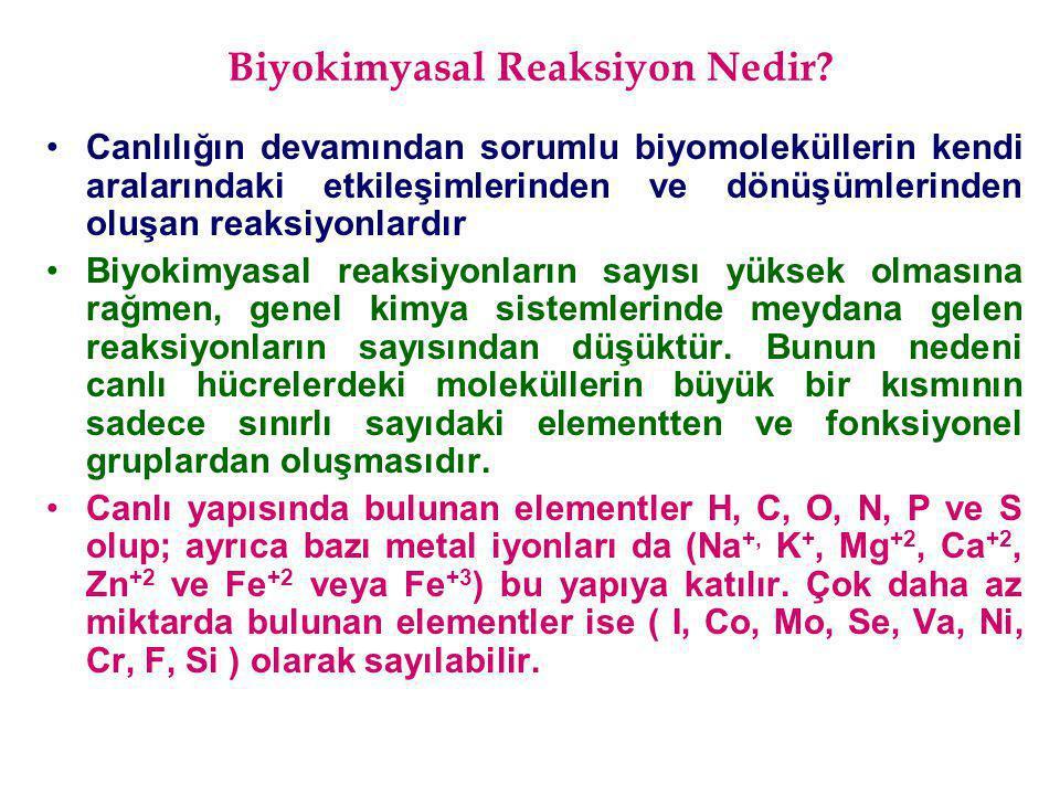 Biyokimyasal Reaksiyon Nedir