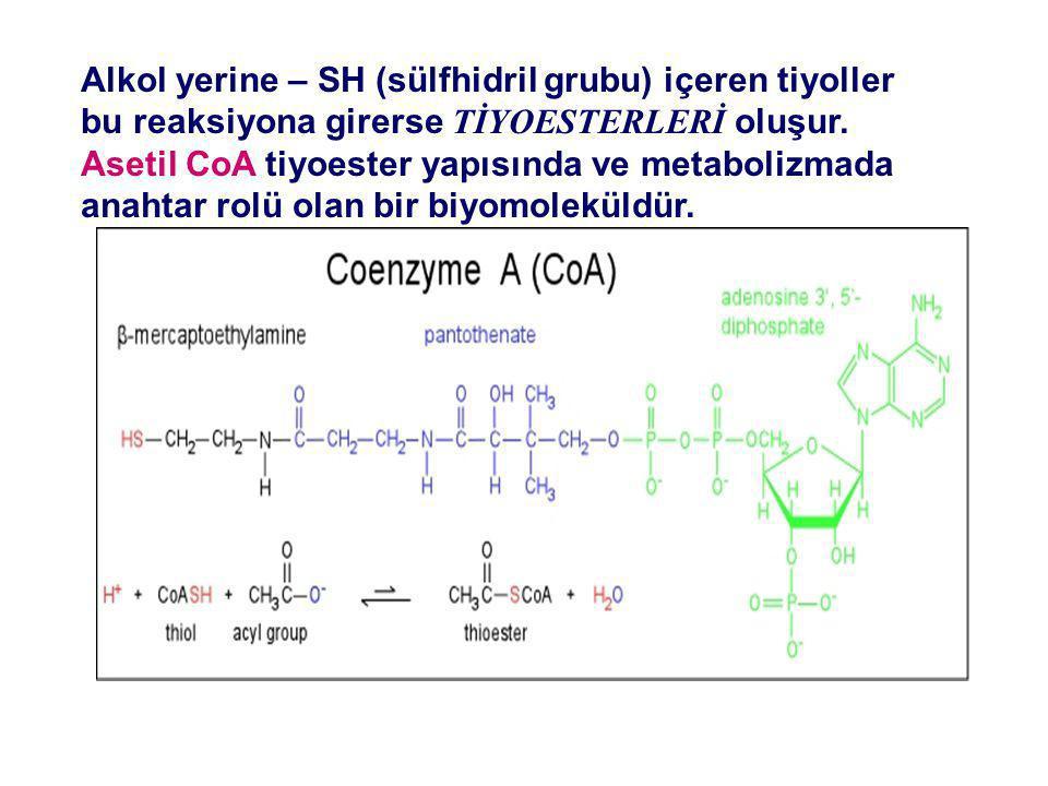 Alkol yerine – SH (sülfhidril grubu) içeren tiyoller bu reaksiyona girerse TİYOESTERLERİ oluşur.