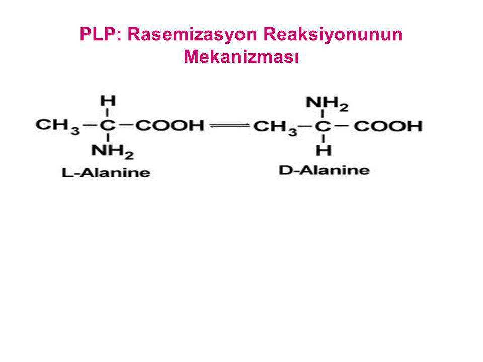 PLP: Rasemizasyon Reaksiyonunun Mekanizması