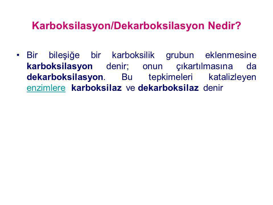 Karboksilasyon/Dekarboksilasyon Nedir