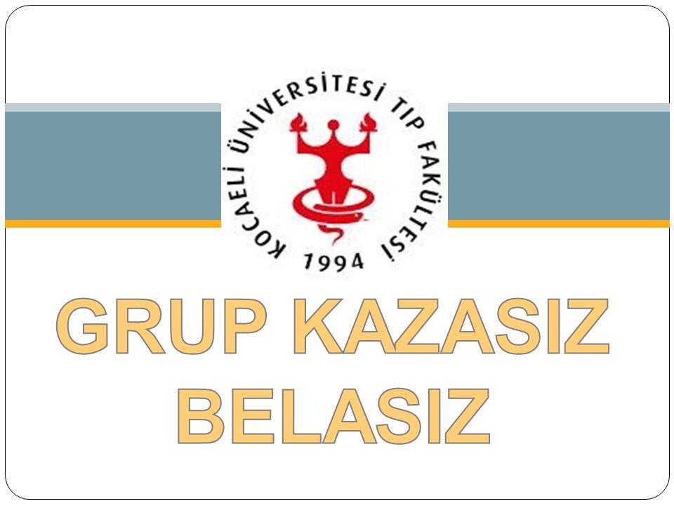 (TODUP Grup C-1) GRUP KAZASIZ BELASIZ