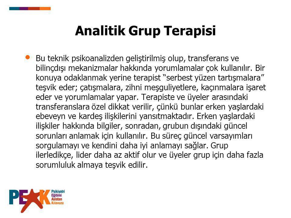 Analitik Grup Terapisi