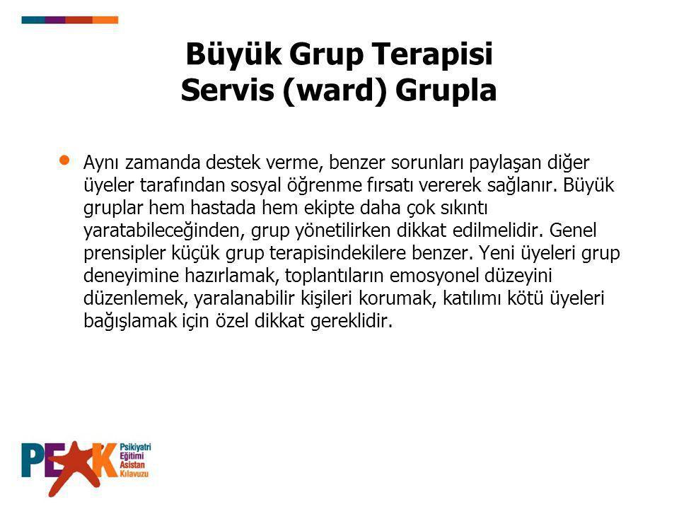 Büyük Grup Terapisi Servis (ward) Grupla