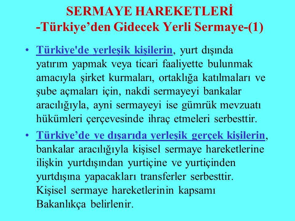 SERMAYE HAREKETLERİ -Türkiye'den Gidecek Yerli Sermaye-(1)