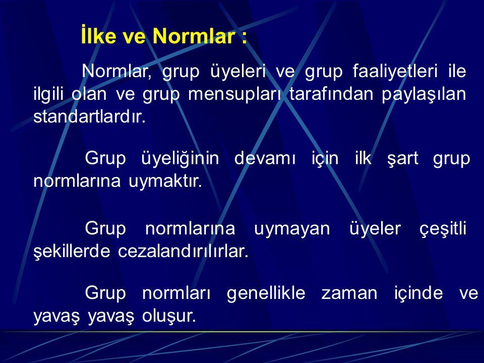 İlke ve Normlar : Normlar, grup üyeleri ve grup faaliyetleri ile ilgili olan ve grup mensupları tarafından paylaşılan standartlardır.