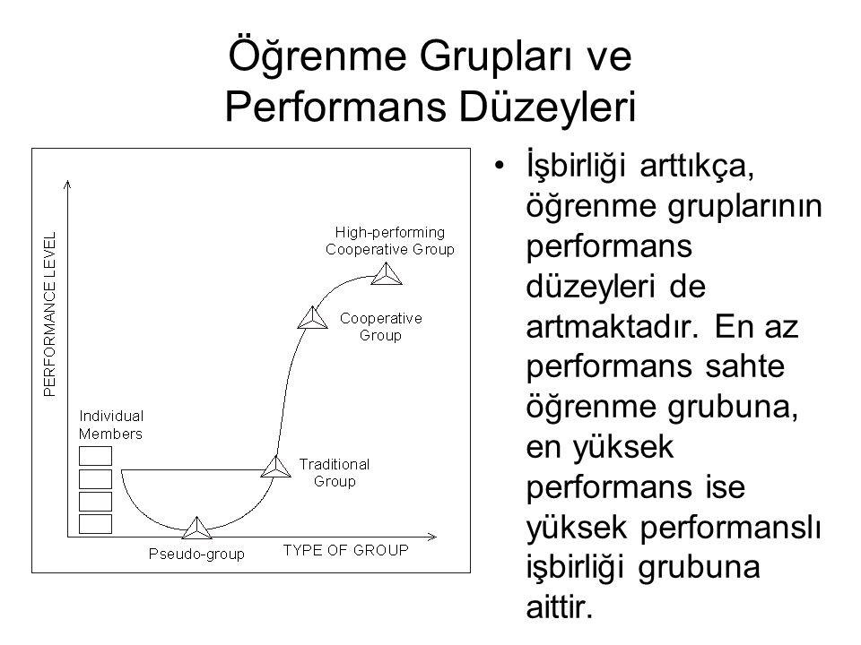 Öğrenme Grupları ve Performans Düzeyleri