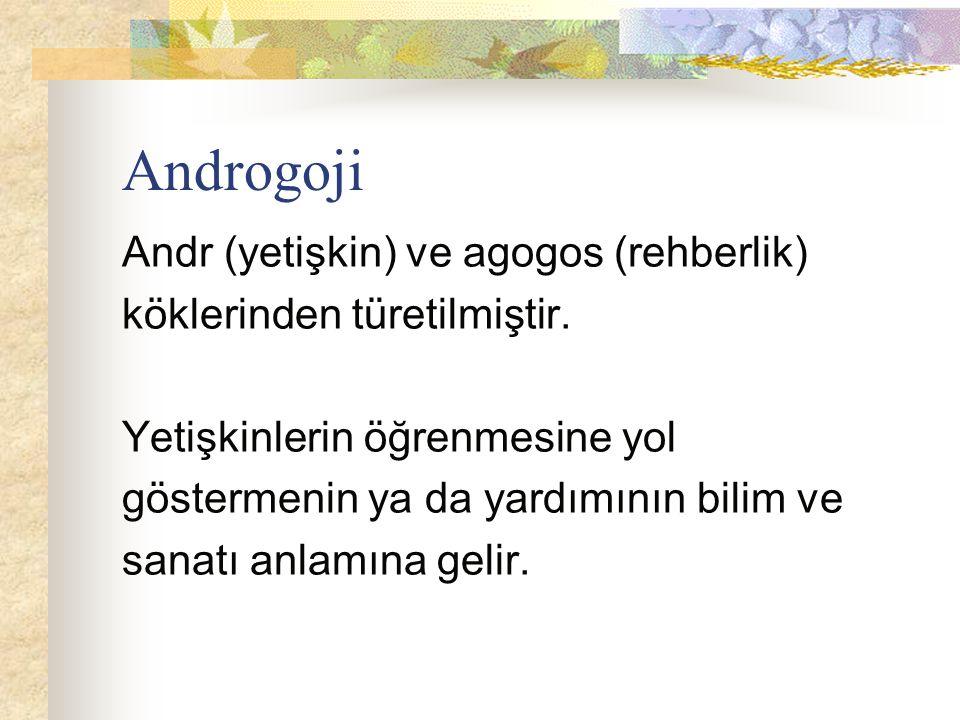 Androgoji Andr (yetişkin) ve agogos (rehberlik)