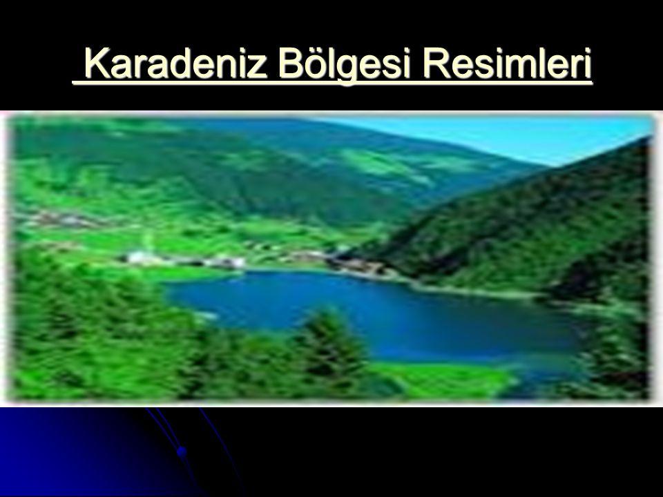 Karadeniz Bölgesi Resimleri