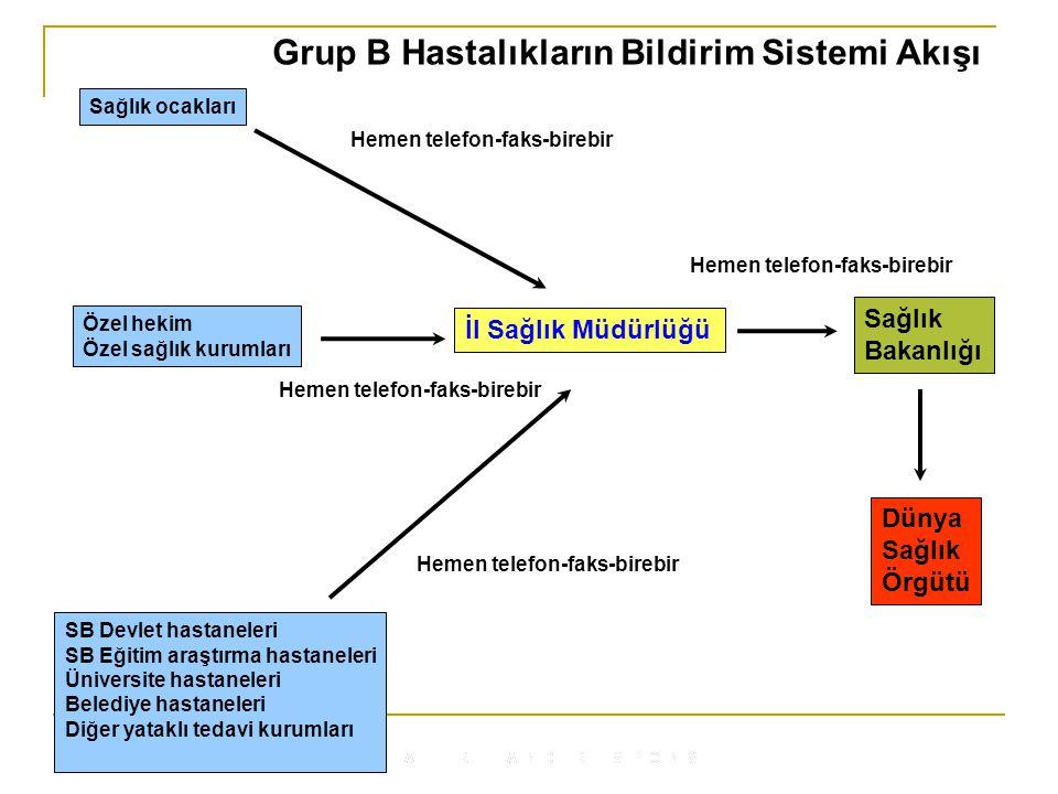 Grup B Hastalıkların Bildirim Sistemi Akışı