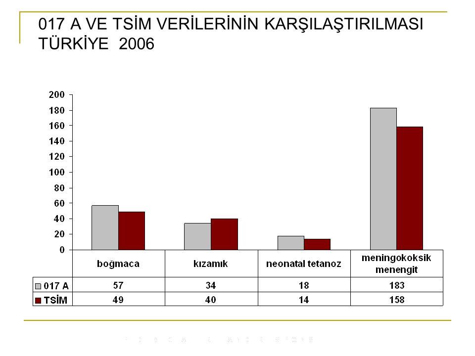 017 A VE TSİM VERİLERİNİN KARŞILAŞTIRILMASI TÜRKİYE 2006