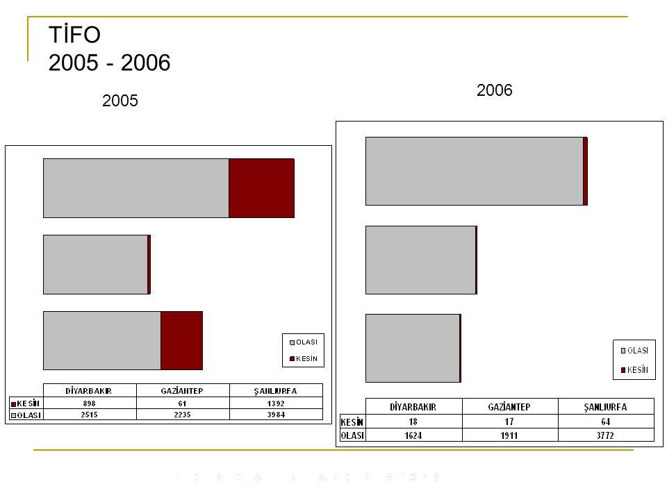 TİFO 2005 - 2006 2006 2005