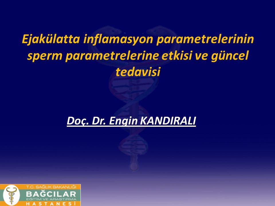 Ejakülatta inflamasyon parametrelerinin sperm parametrelerine etkisi ve güncel tedavisi