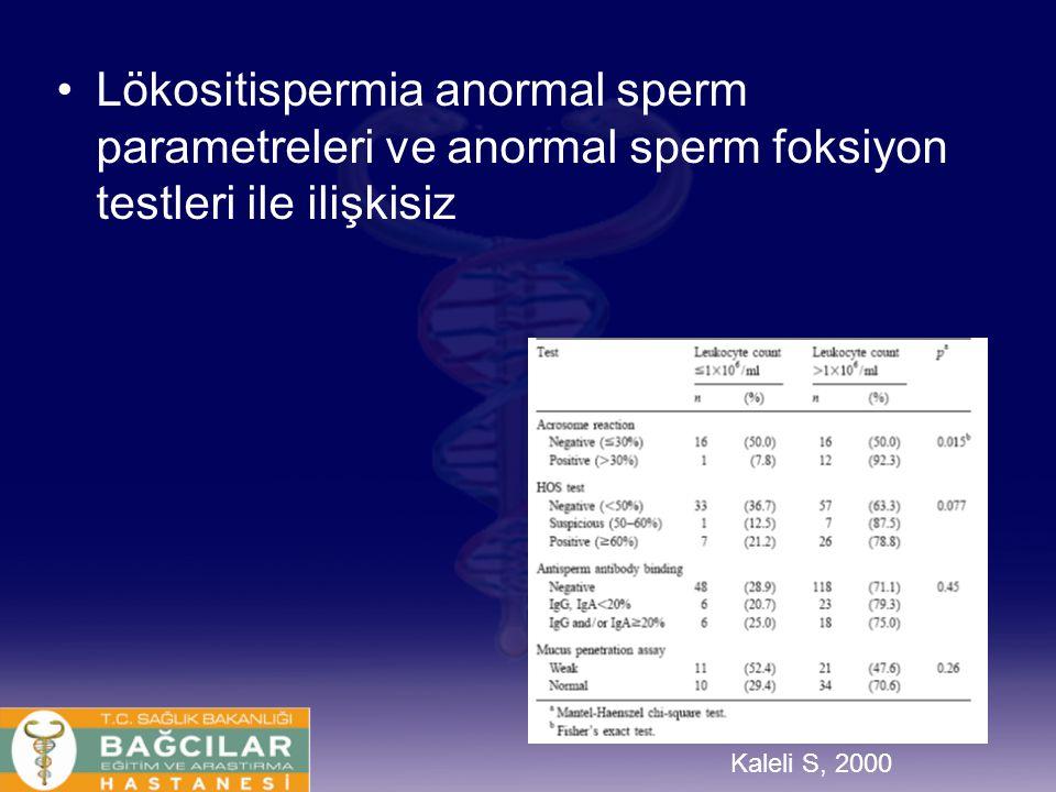 Lökositispermia anormal sperm parametreleri ve anormal sperm foksiyon testleri ile ilişkisiz