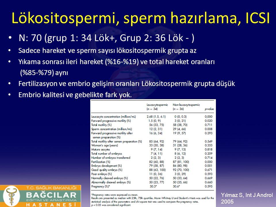 Lökositospermi, sperm hazırlama, ICSI