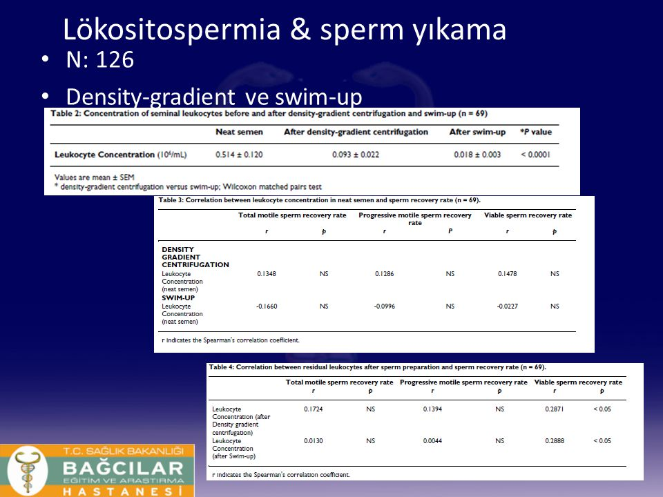 Lökositospermia & sperm yıkama