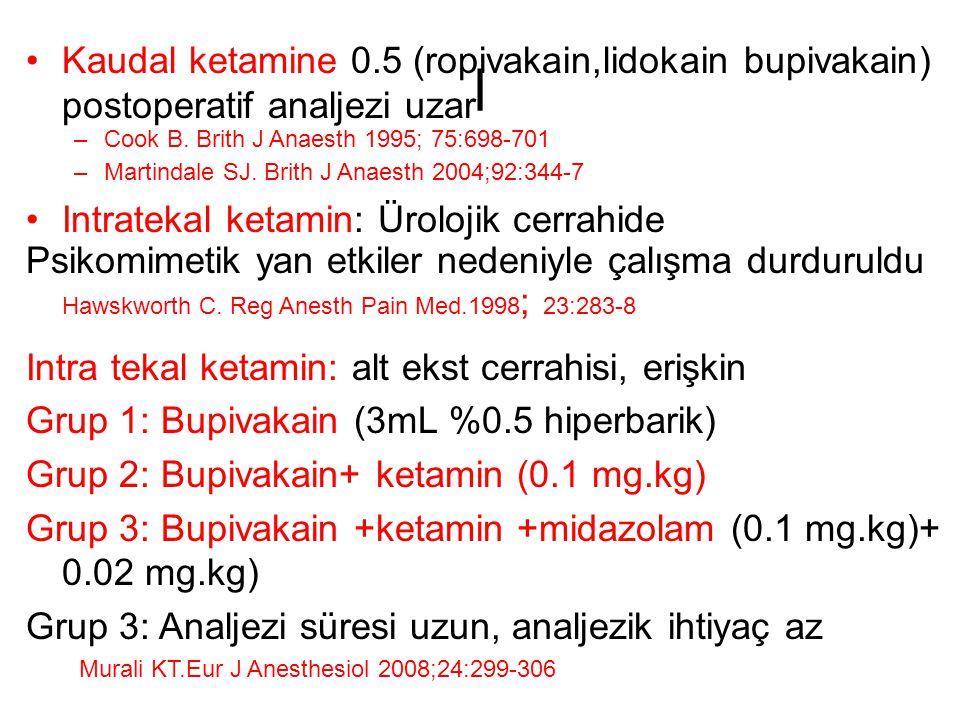 Kaudal ketamine 0.5 (ropivakain,lidokain bupivakain) postoperatif analjezi uzar