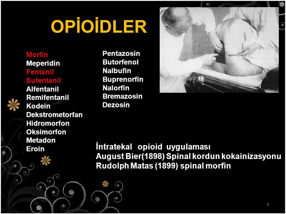OPİOİDLER İntratekal opioid uygulaması