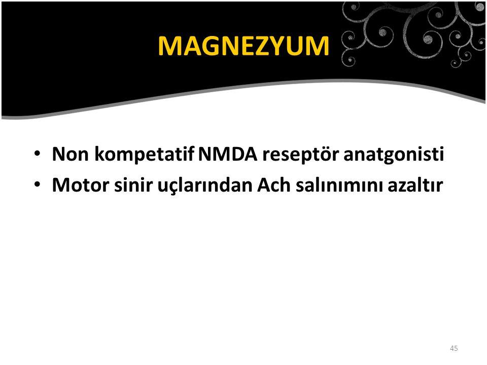 MAGNEZYUM Non kompetatif NMDA reseptör anatgonisti
