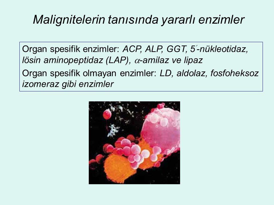 Malignitelerin tanısında yararlı enzimler