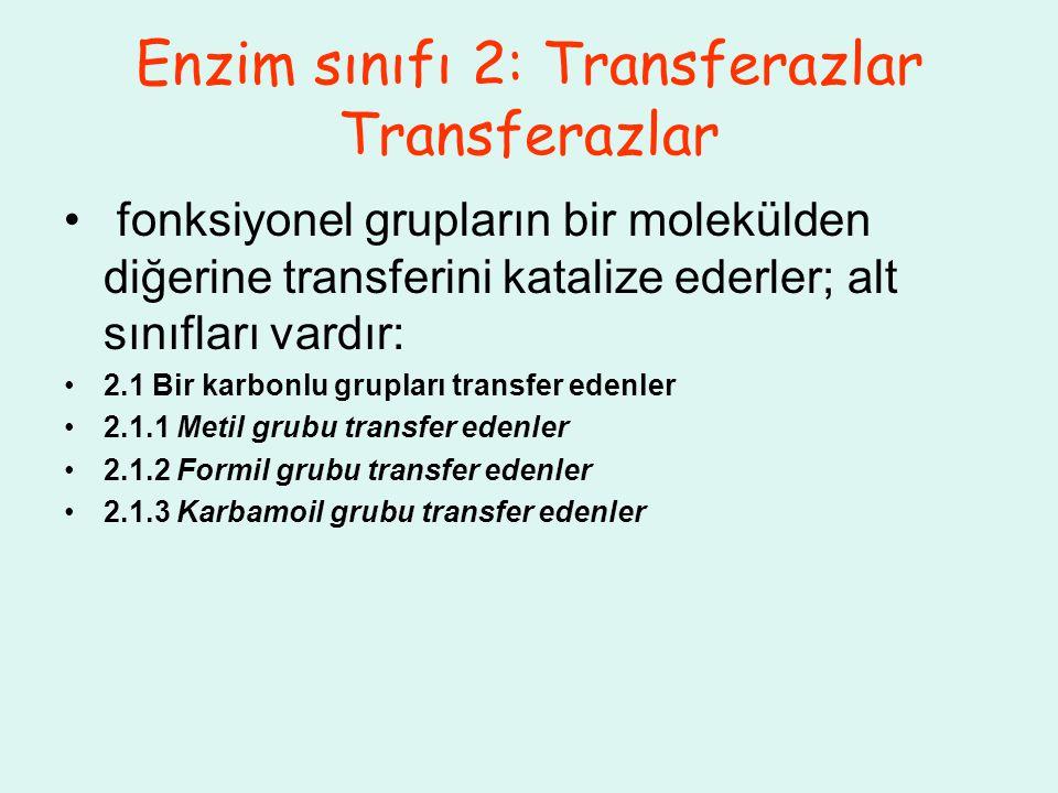 Enzim sınıfı 2: Transferazlar Transferazlar