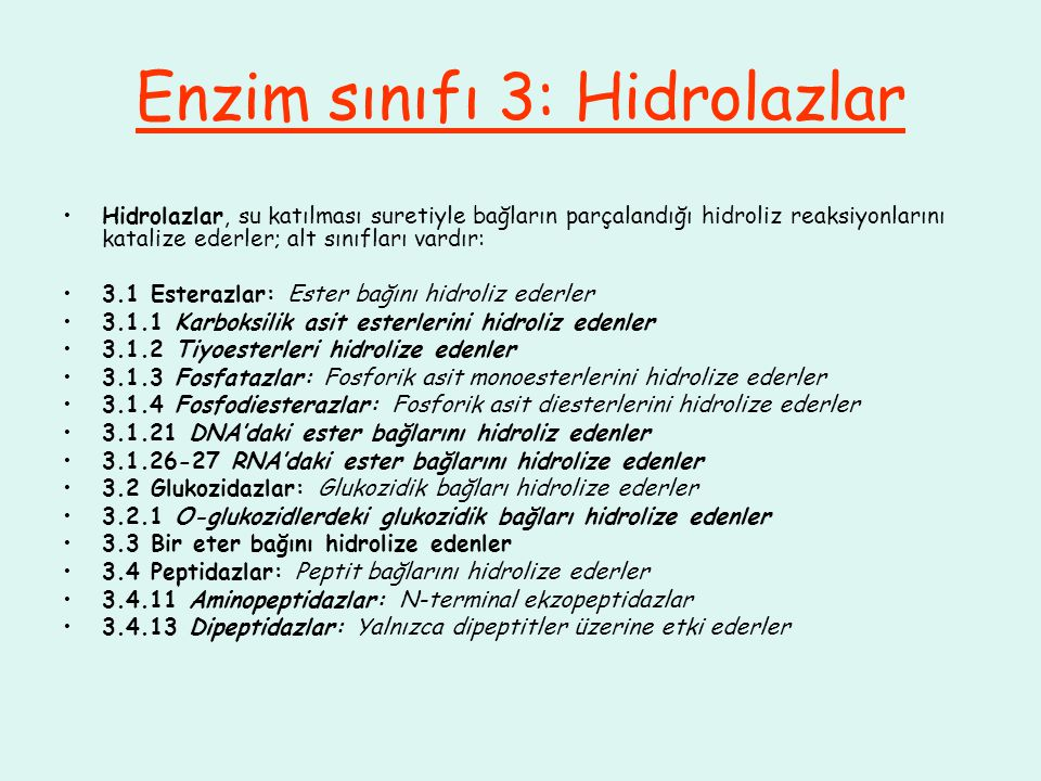 Enzim sınıfı 3: Hidrolazlar