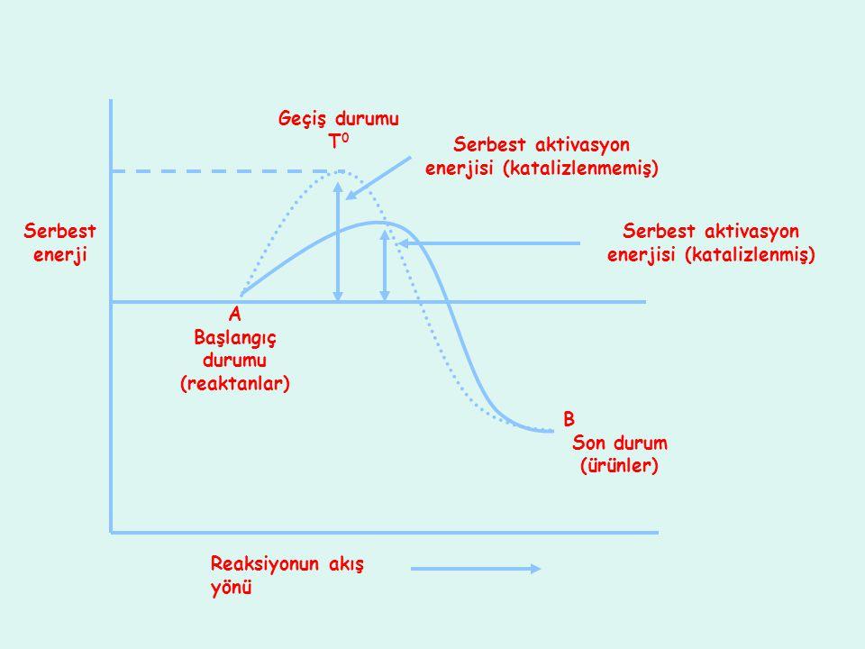 Serbest aktivasyon enerjisi (katalizlenmemiş)