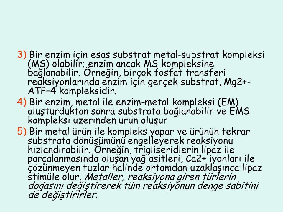 3) Bir enzim için esas substrat metal-substrat kompleksi (MS) olabilir; enzim ancak MS kompleksine bağlanabilir. Örneğin, birçok fosfat transferi reaksiyonlarında enzim için gerçek substrat, Mg2+-ATP−4 kompleksidir.