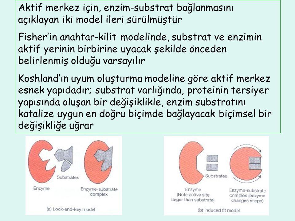 Aktif merkez için, enzim-substrat bağlanmasını açıklayan iki model ileri sürülmüştür