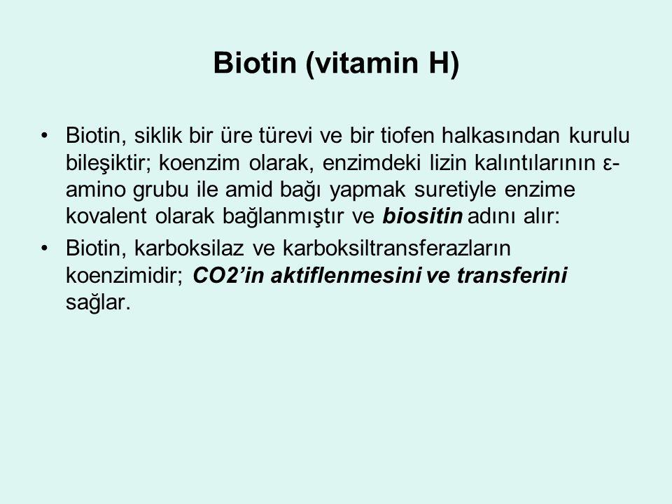 Biotin (vitamin H)