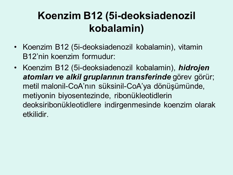 Koenzim B12 (5i-deoksiadenozil kobalamin)