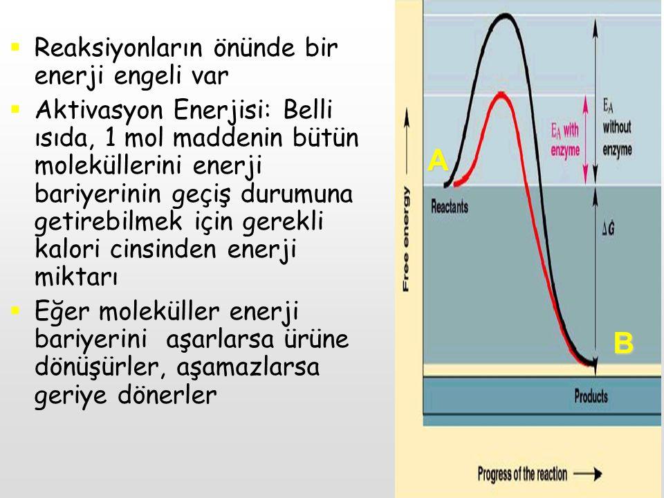 A B Reaksiyonların önünde bir enerji engeli var