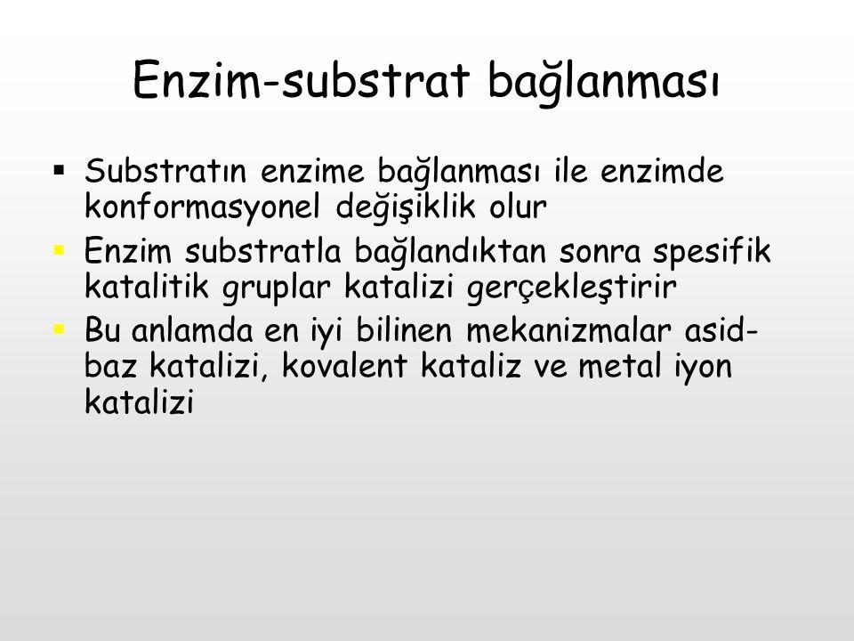 Enzim-substrat bağlanması