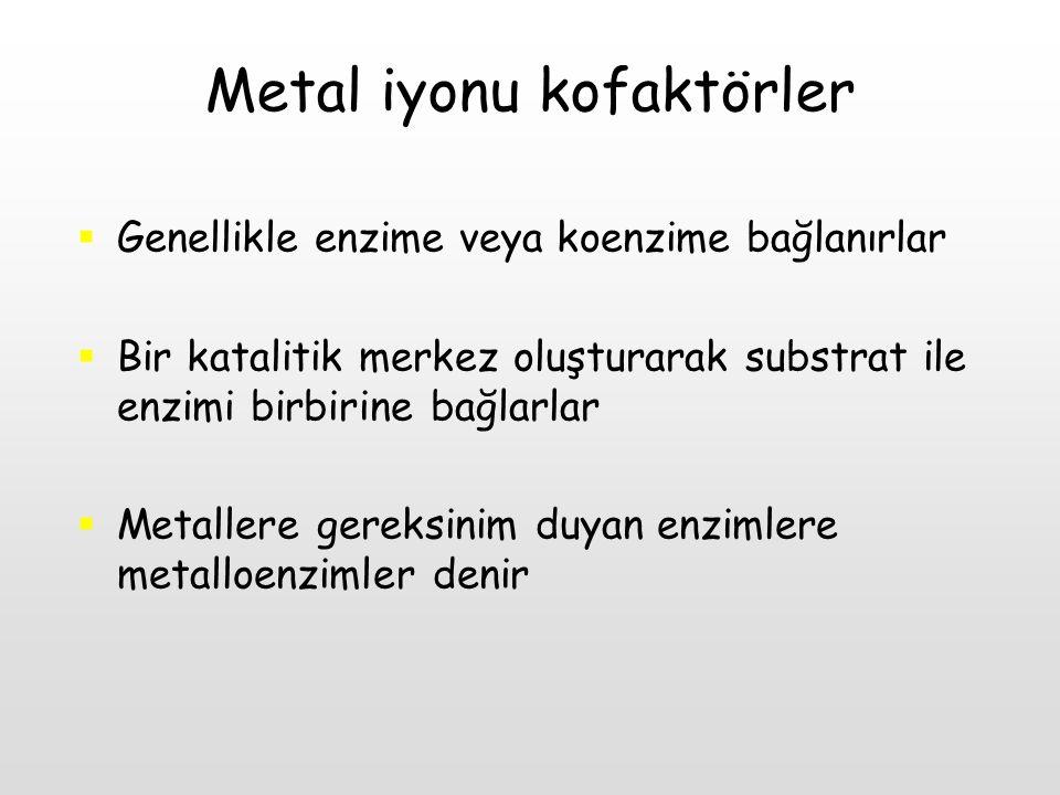 Metal iyonu kofaktörler