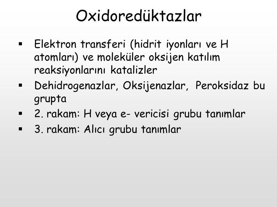 Oxidoredüktazlar Elektron transferi (hidrit iyonları ve H atomları) ve moleküler oksijen katılım reaksiyonlarını katalizler.