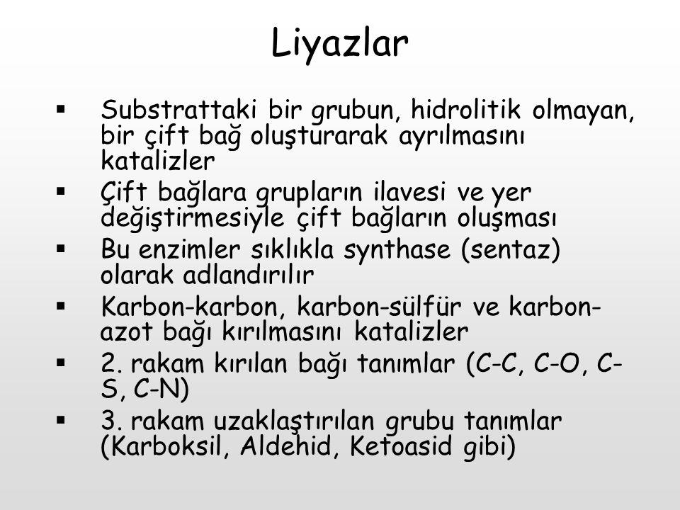 Liyazlar Substrattaki bir grubun, hidrolitik olmayan, bir çift bağ oluşturarak ayrılmasını katalizler.
