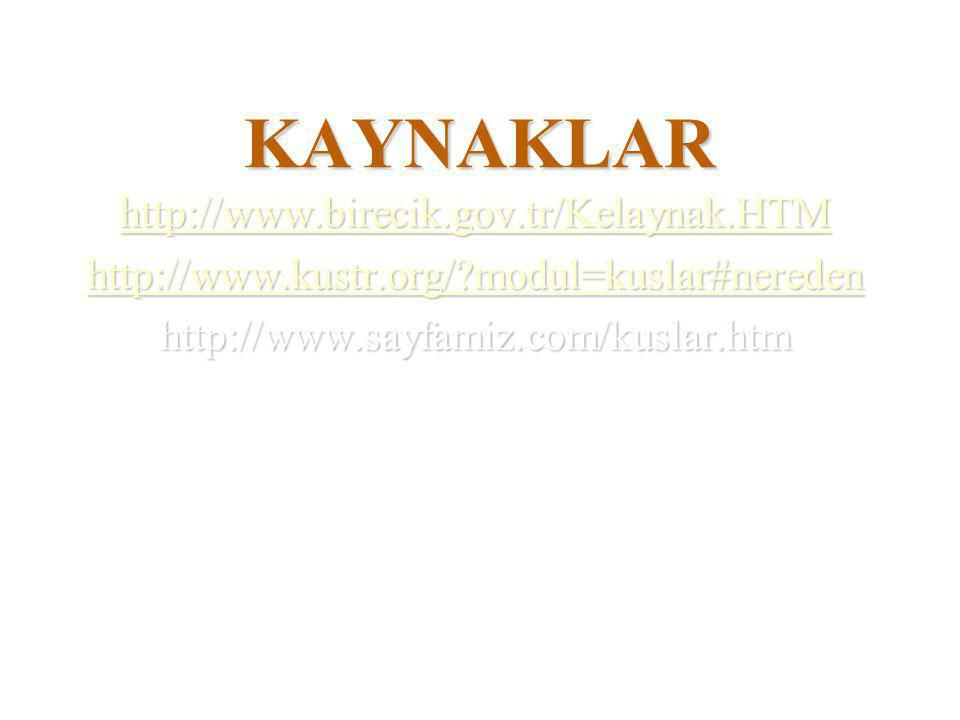 KAYNAKLAR http://www.birecik.gov.tr/Kelaynak.HTM