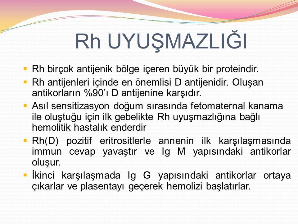 Rh UYUŞMAZLIĞI Rh birçok antijenik bölge içeren büyük bir proteindir.